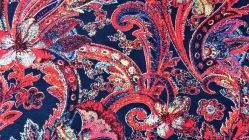 Jersey Indian Paisley 4542